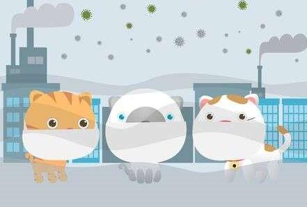 Coronavirus, l'inquinamento atmosferico ne accelera la diffusione?